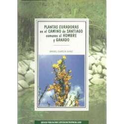 PLANTAS CURADORAS EN EL CAMINO DE SANTIAGO COMUNES AL HOMBRE Y GANADO