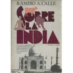 SOBRE LA INDIA