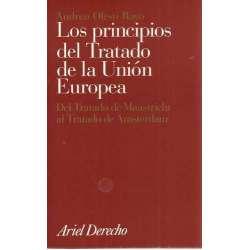 Los principios del tratado de la unión europea. Del tratado de Maastricht al tratado de Ámsterdam