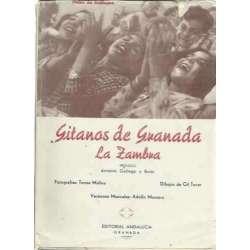 GITANOS DE GRANADA (La Zambra)