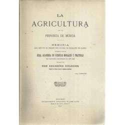 La agricultura en la provincia de Murcia