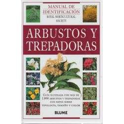 Arbustos y trepadoras
