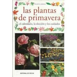 Las plantas de primavera. El calendario, la elección y los cuidados