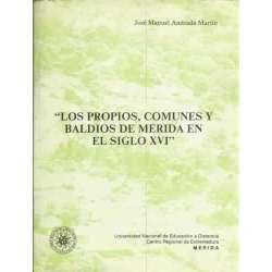 Los propios, comunes y baldios de Merida en el siglo XVI