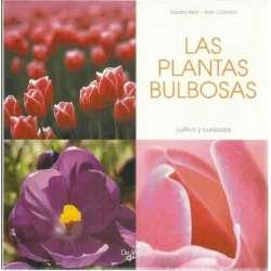 Las plantas bulbosas. Cultivo y cuidados