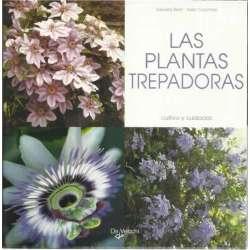 Las plantas trepadoras. Cultivo y cuidados