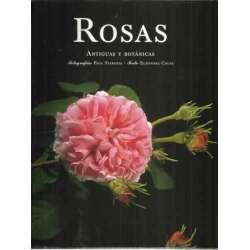 Rosas. Antiguas y botánicas
