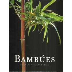Bambúes