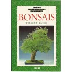 Cómo seleccionar y cuidar bonsais