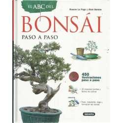 El ABC del bonsái paso a paso
