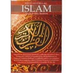 Breve historia del... Islam