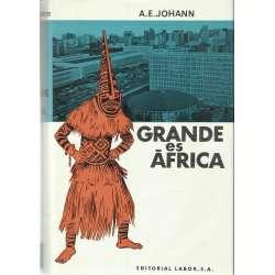 GRANDE ES ÁFRICA. Una imagen nueva del misterioso continente negro.