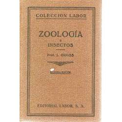 ZOOLOGÍA II: INSECTOS
