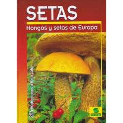 Setas. Hongos y setas de Europa