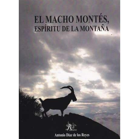 El macho montés, espíritu de la montaña